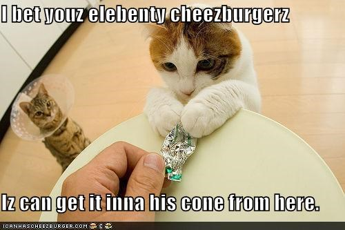 Cheezburger Image 3985615360