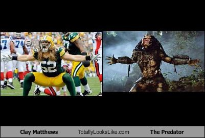 clay matthews The Predator