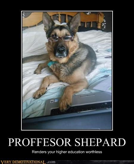 anthropomorphizing college dammit dogs impossible laptop school