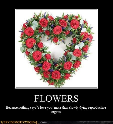 FLOWERS Because nothing says 'i love you' more then slowly dying reproductive organs