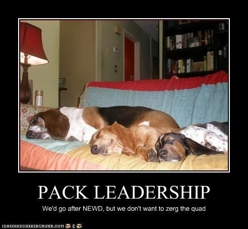 PACK LEADERSHIP We'd go after NEWD, but we don't want to zerg the quad