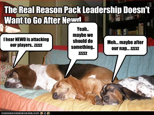 The Real Reason Pack Leadership Doesn't Want to Go After Newd I hear NEWD is attacking our players.. zzzzz Yeah.. maybe we should do something.. zzzzz Meh... maybe after our nap... zzzzz