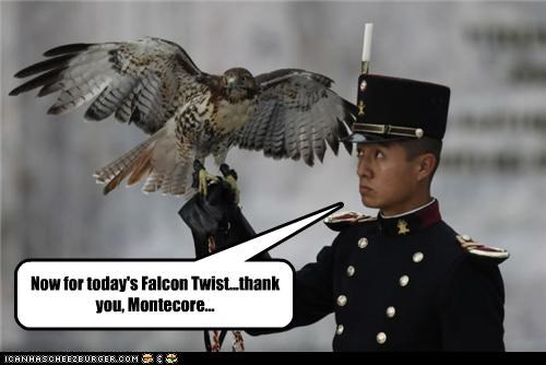 Now for today's Falcon Twist...thank you, Montecore...