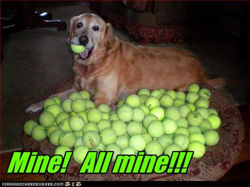 all mine guarding Hall of Fame mine ownership possessive tennis balls