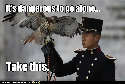 animal bird funny lolz wtf - 3989228544