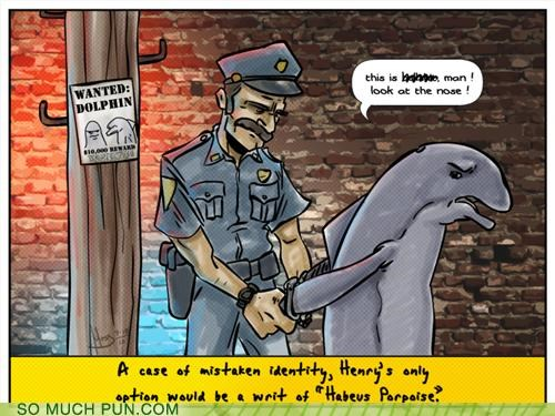 arrested cops dolphin habeas corpus mistake police porpoise resemblance wanted