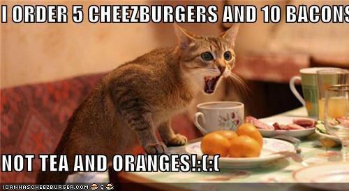 Cheezburger Image 3990227712