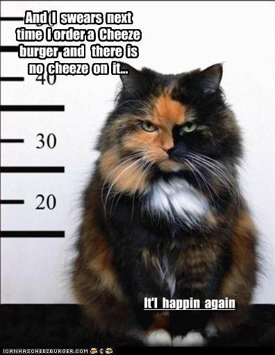 Cheezburger Image 3990388224