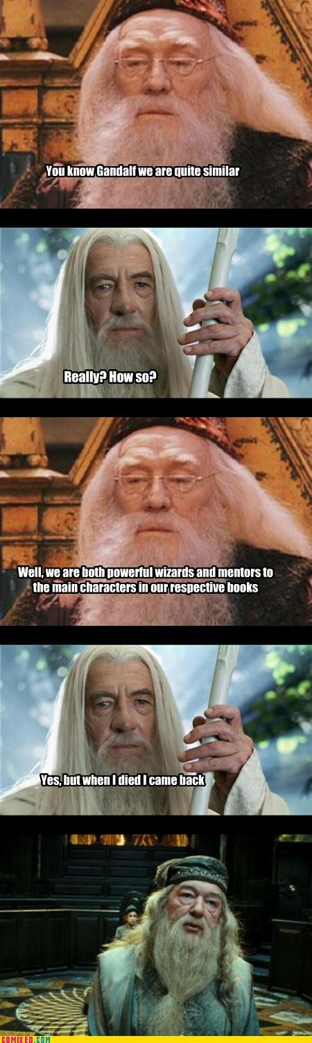 classics,dumbledore,From the Movies,gandalf,Harry Potter,Lord of the Rings,magic,resurrection,spoilers,wizards