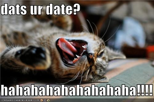 caption captioned cat date laughing mean mocking - 3991054592
