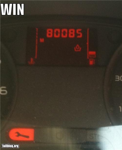 80085 boobs cars failboat odometer win - 3992109568