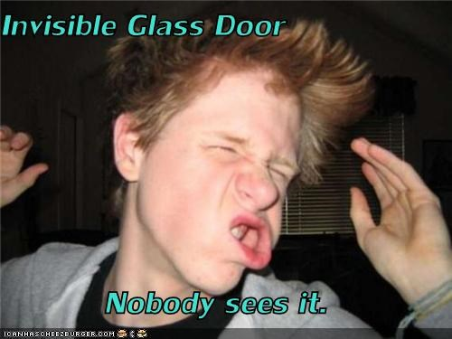 derp durr glass door invisible no one sees it smack - 3992931072