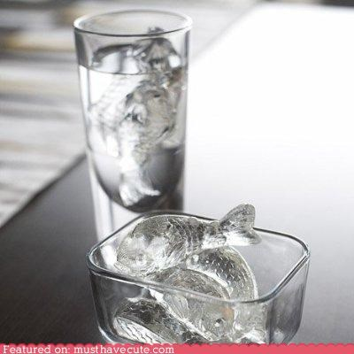 beverage drink fish fish shape ice ice cube tray ice cubes Kitchen Gadget koi
