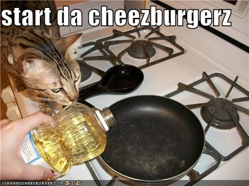 Cheezburger Image 3996551424