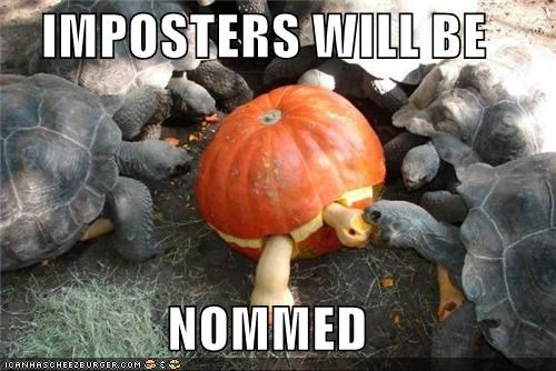 caption captioned impostor impostors nommed noms pumpkins punishment turtle - 3997981440