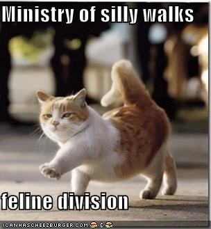 caption,captioned,cat,feline division,ministry of silly walks,silly,walking