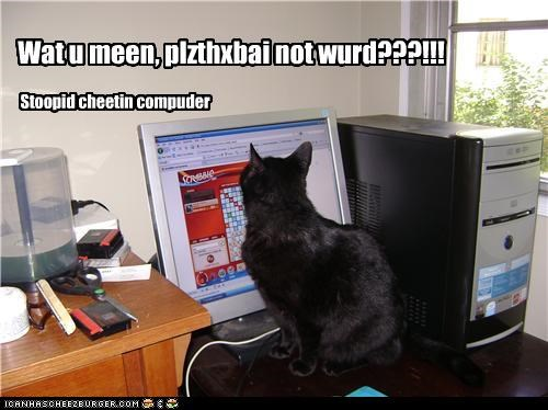 caption captioned cat cheating computer confused insulted not a word offended plzthxbai scrabble word