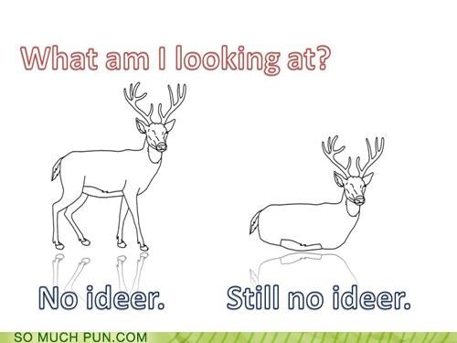 confusion deer no idea question ruminating what-am-i-looking-at - 3998700032