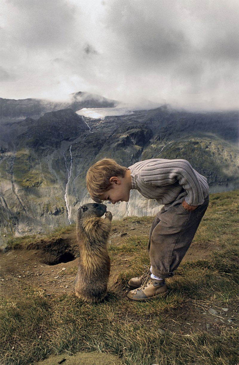 boy friendship marmot austria - 3999237