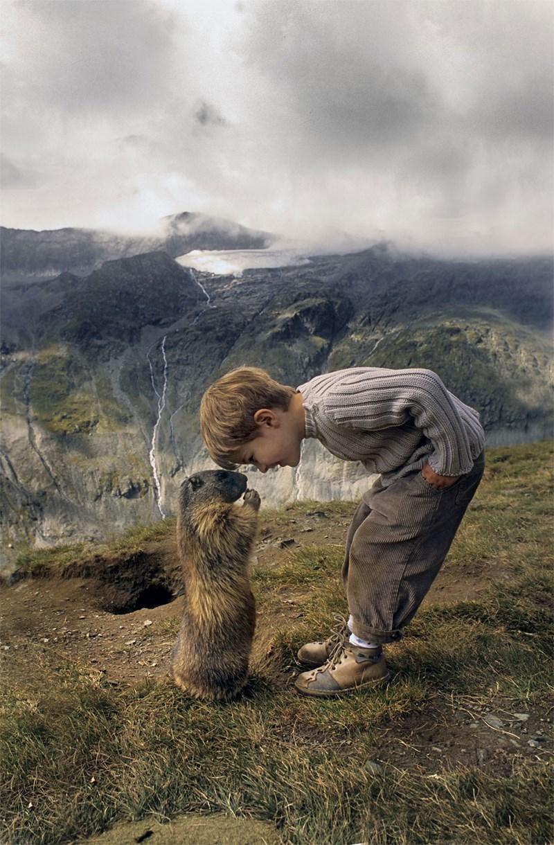 boy friendship marmot austria - 3999237