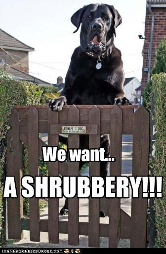 We want... A SHRUBBERY!!!