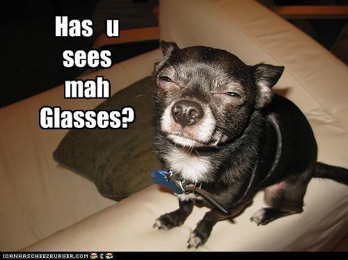 Has u sees mah Glasses?