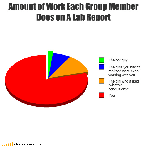 Amount of Work Each Group Member Does on A Lab Report