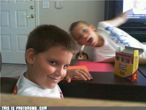 Animal Bomb butt crayons dogs kids photobomb recursive - 4003460864