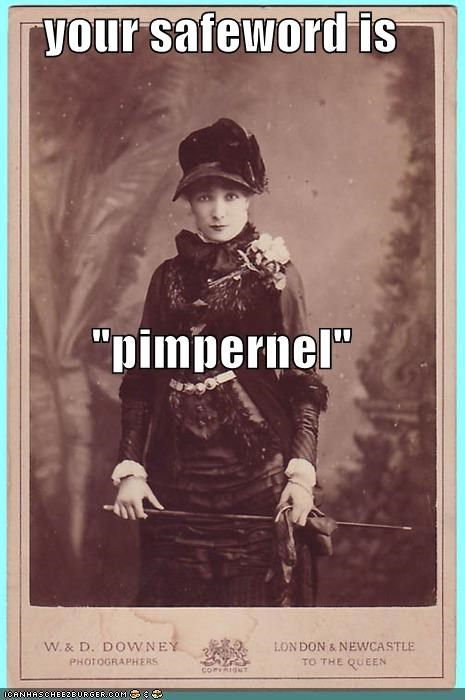 funny lady mistress Photo photograph wtf - 4003634944