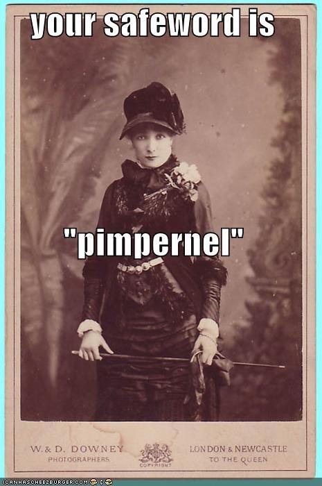 funny lady mistress Photo photograph wtf