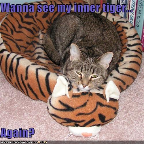 Cheezburger Image 4004428288