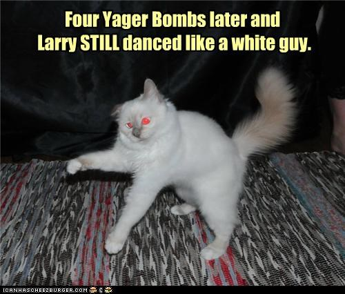 caption,captioned,cat,dancing,drinking,drunk,four,jager bombs,later,saying,truth,white