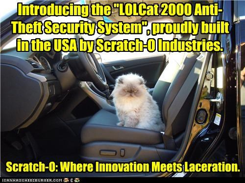 advertisement,angry face,anti-theft,caption,captioned,car,cat,innovation,laceration,made in the usa,scratch-o,security system