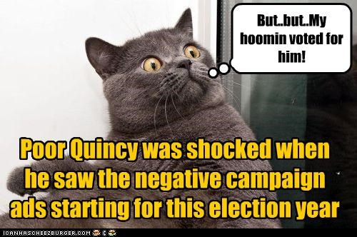 Poor Quincy was shocked when he saw the negative campaign ads starting for this election year But..but..My hoomin voted for him!