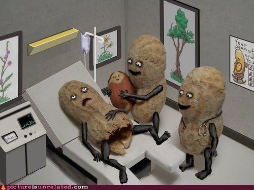 art birth food miracle of life peanuts wtf - 4008794368