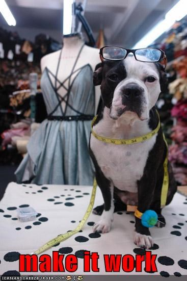 fashion,fashion design,glasses,make it work,measuring tape,mixed breed,pit bull,pitbull,sewing,Tim Gunn