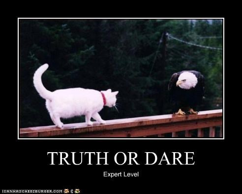 caption,captioned,cat,difficulty,eagle,expert level,face off,truth or dare