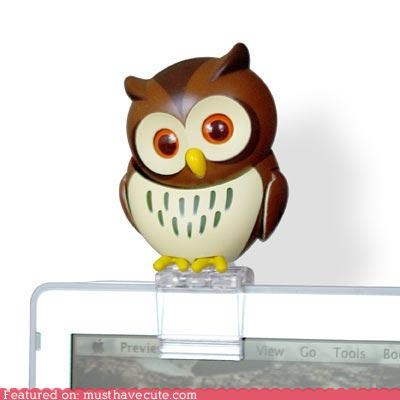 accessory animal animated computer cute-kawaii-stuff figurine gadget mechanical Office Owl Teeny USB - 4010222336
