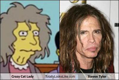 Aerosmith,cartoons,crazy cat lady,musician,steven tyler,the simpsons