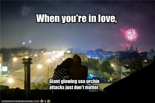 fireworks,flag,lolz,love