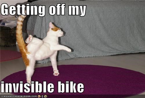 bike caption captioned cat dismounting getting off invisible invisible bike - 4011055872