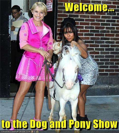 celeb funny jersey shore snooki TV - 4011521792