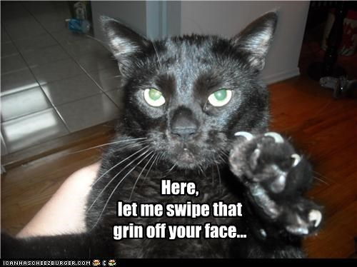 attention caption captioned cat clawing claws face grin here let me off swipe
