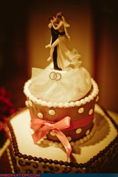 Crazy Brides crazy groom Dreamcake eww funny wedding photos surprise were-in-love wtf - 4011855616