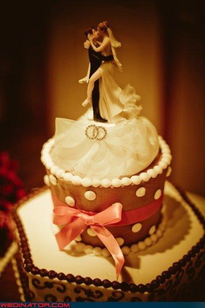 Crazy Brides crazy groom Dreamcake eww funny wedding photos surprise were-in-love wtf - 4011855616