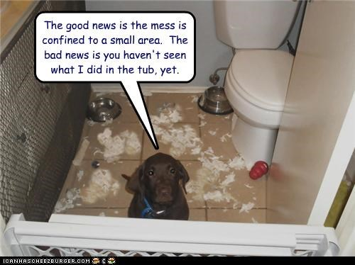 apologizing,bad news,confined,dog gate,good news,mess,puppy,puppy eyes,small area,tub