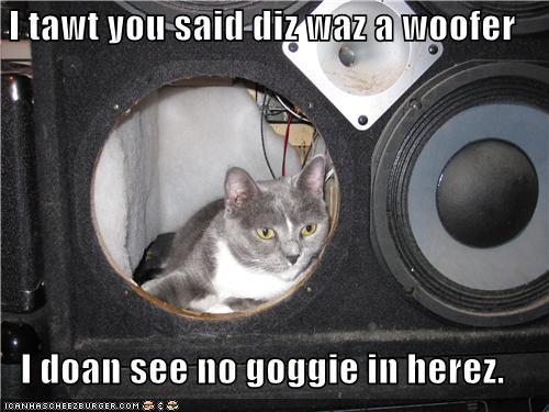 caption captioned cat confusion misinterpretation woofer - 4013143296