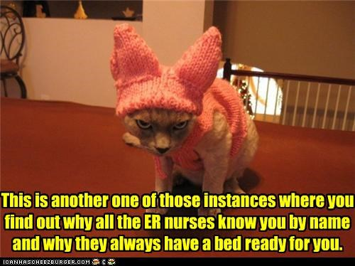 caption,captioned,cat,costume,epiphany,ER,extra bed,figuring it out,horrible,known by name,one of those instances,prepared,ready,sweater