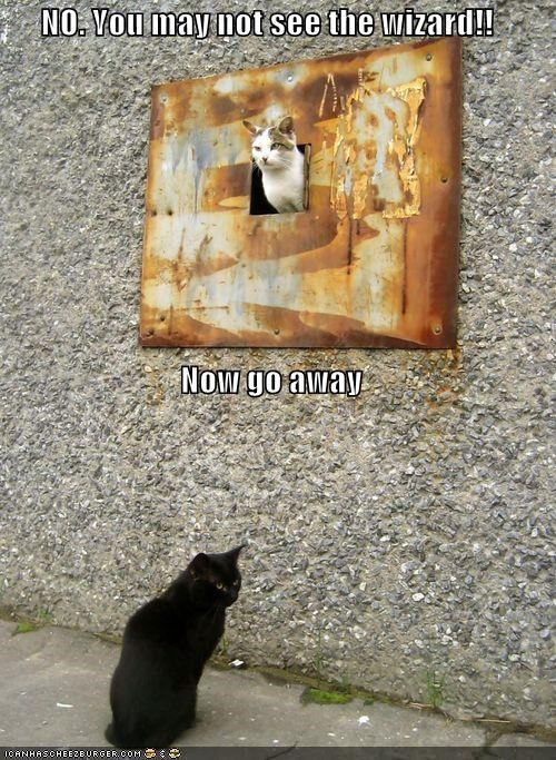 caption,captioned,cat,denial,doorway,gate guard,go away,no,rejection,see the wizard,the wizard of oz