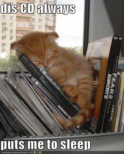 caption captioned cat CD cute kitten lullaby Music shelf sleeping window - 4015066880